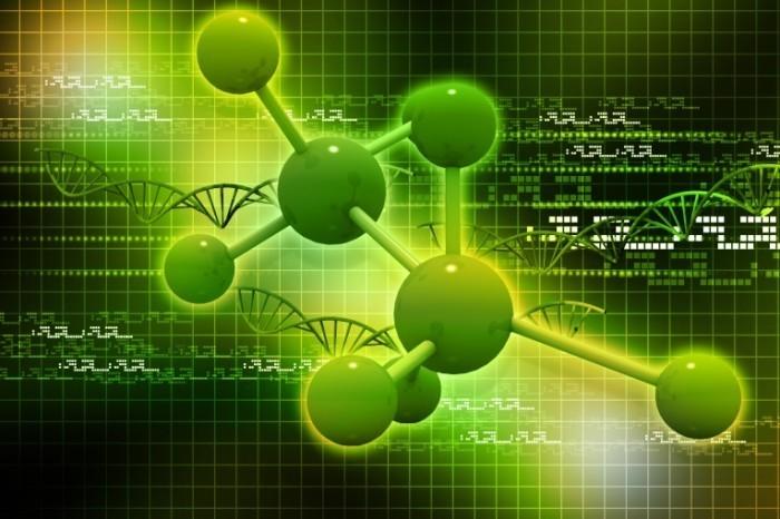 Fotolia 53644442 Subscription Monthly XL 700x466 Строение клетки   Cell structure