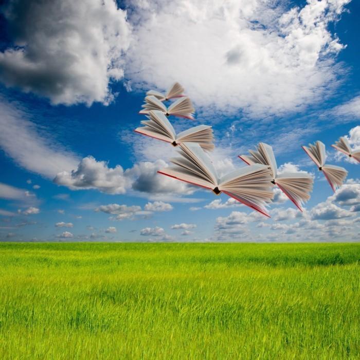 shutterstock 101305666 700x700 Летающие книги   Flying Books