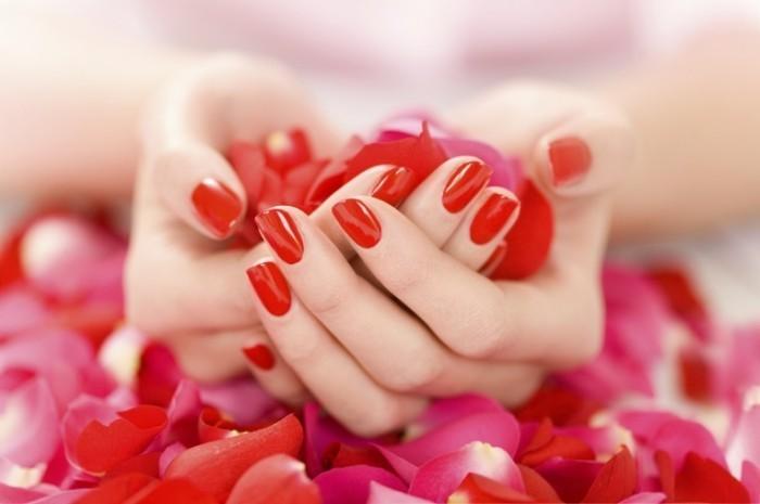 1359366354 istock 000005913484medium 700x465 Руки с маникюром   Hands with manicure