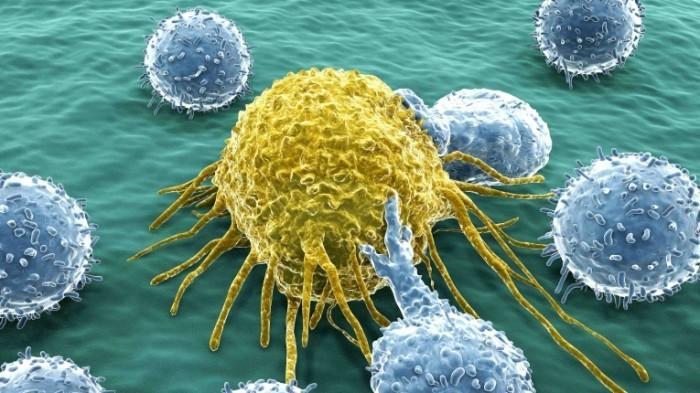 2012 12 03 Krebszelle tg.jpg 700x393 Раковые клетки   Cancer cells