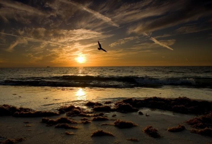 Fotolia 9563588 Subscription L 700x477 Море в закат   Sea at sunset
