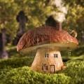 Грибной дом - Mushroom house