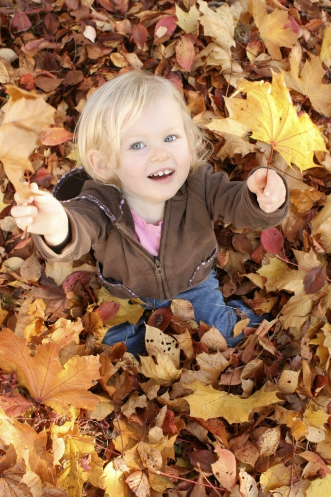 istock 000007388712medium 682x1024 Девочка в листьях   Girl in the leaves