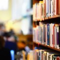 Книги на стеллажах - Books on the racks