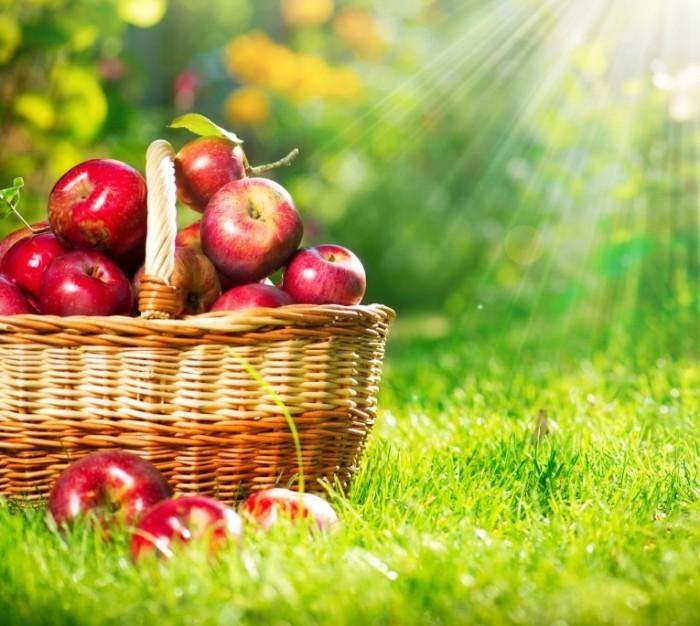 Depositphotos 14134409 l 700x626 Кошелка с яблоками   Wallets with apples