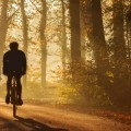 Велосипедист в лесу - Cyclist in the forest