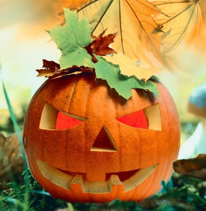 Fotolia 57323381 Subscription Monthly XXL1 700x715 Хэллоуин   Halloween