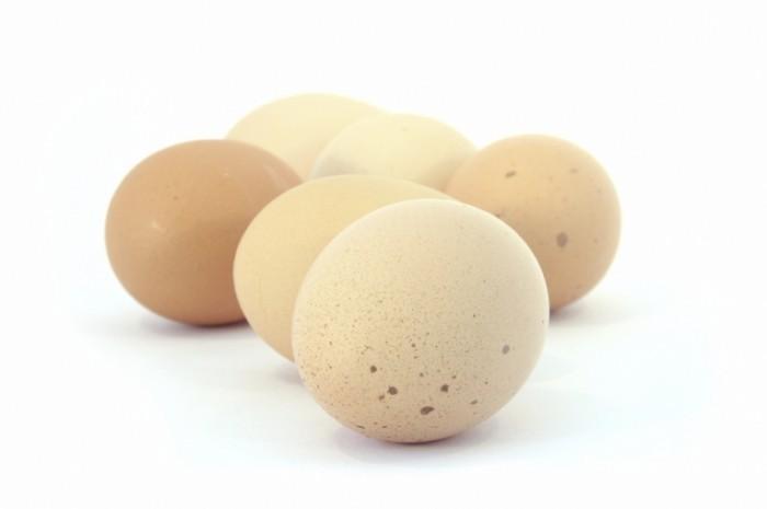 heneggshires 700x465 Куриные яйца   Chicken eggs