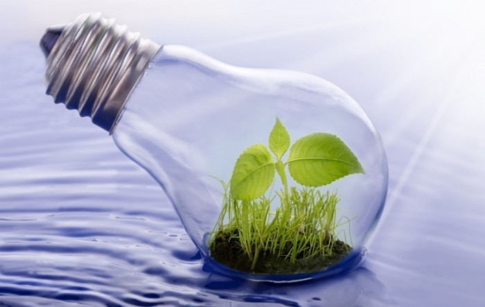 lightbulb plant water nexus istock 000020312449medium1 e1402754075877 700x443 Листик в лампе   Leaf in the lamp