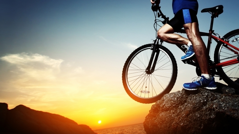 a discussion of the effects of mountain biking on bulk density and terrain cover