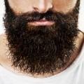 Борода - Beard