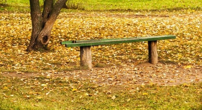 Dollarphotoclub 47324905 700x384 Лавочка в осенних листьях   Bench in autumn leaves