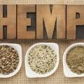 Миски с коноплей - Bowls with hemp