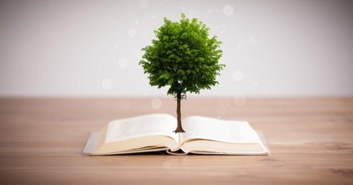 Dollarphotoclub 66864893 700x368 Дерево из книги   Tree of Books