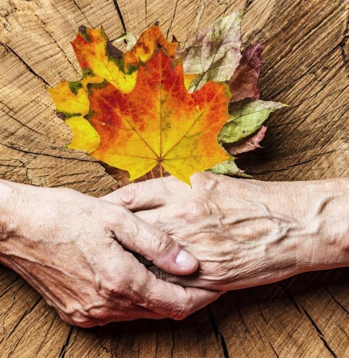 gd Palliativmedizin 14KW42 Fotolia 57167245 Vera Kuttelvaserova 996x1024 700x719 Пожилые руки   Older hands