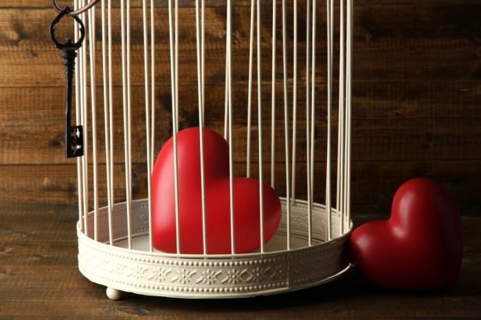 Dollarphotoclub 60628446 700x466 Сердце в клетке   Heart in a cage