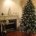 Украшенная елка - Decorated Christmas Tree