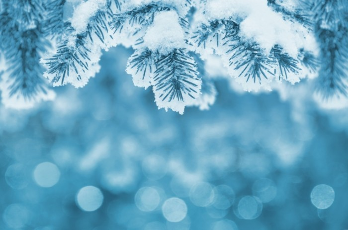 dollarphotoclub 71829639 700x463 Зима   Winter