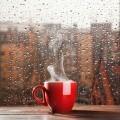 Чашка у окна - Cup window