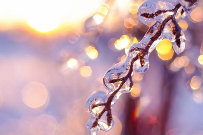 shutterstock 171169685 1830x1220 72 700x466 Обледенелая ветвь   Icy branch