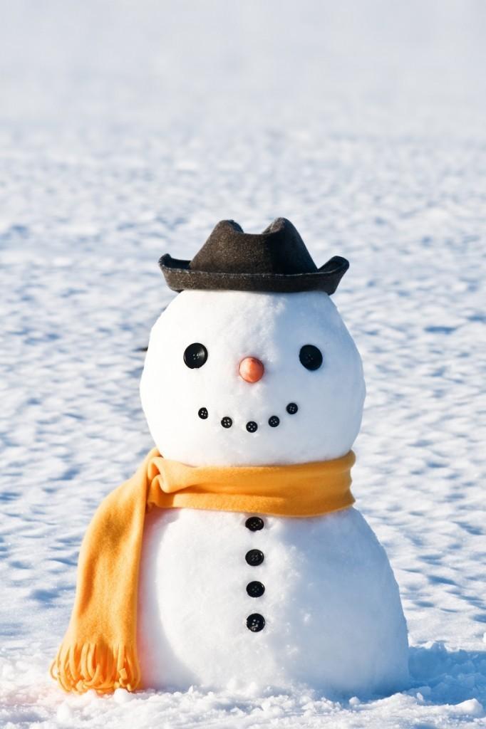 shutterstock 65487973 682x1024 Снеговик   Snowman