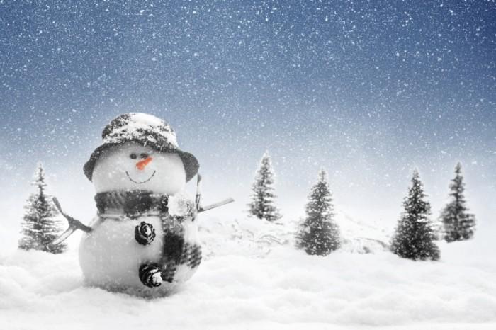 shutterstock 85379488 700x466 Снеговик   Snowman