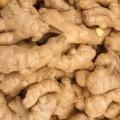 Имбирь - Ginger