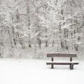 Лавочка в снегу - Bench in the snow