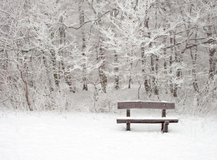 shutterstock snow scene 700x517 Лавочка в снегу   Bench in the snow
