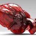 Орган сердце - Body heart