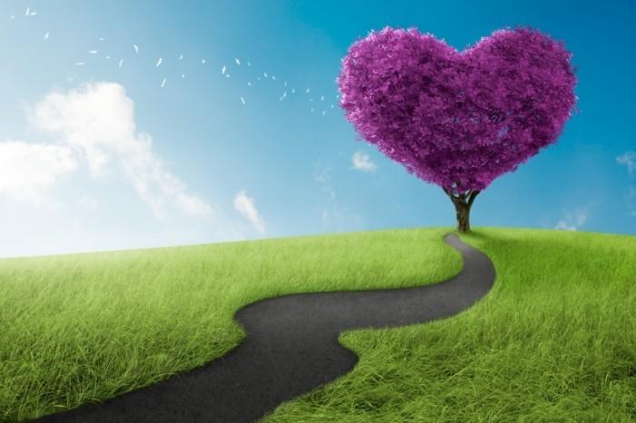 Dollarphotoclub 52577291 700x466 Дорога к сердцу   Road to the heart