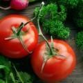 Томат - Tomato