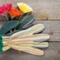 Перчатка и цветы - Glove and flowers
