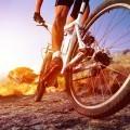 Велосипедист - Cyclist
