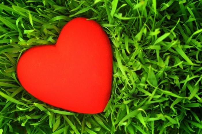 Dollarphotoclub 60388492 700x466 Сердце на траве   Heart on the grass