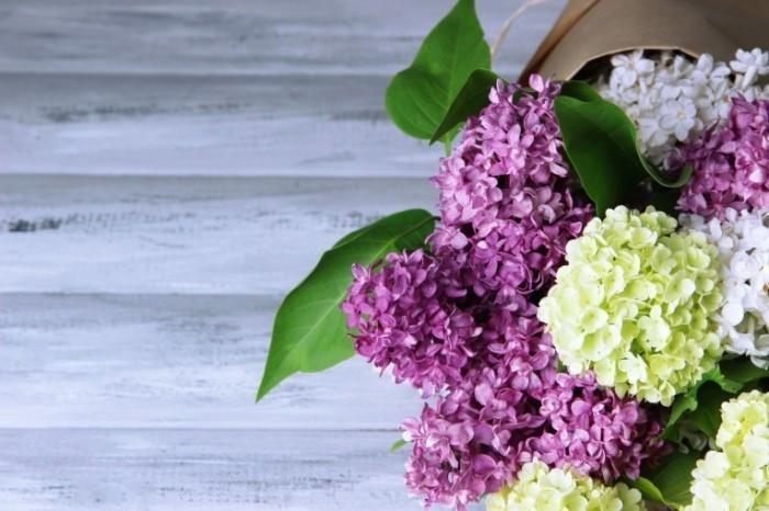 Dollarphotoclub 65448697 700x466 Сирень   Lilac