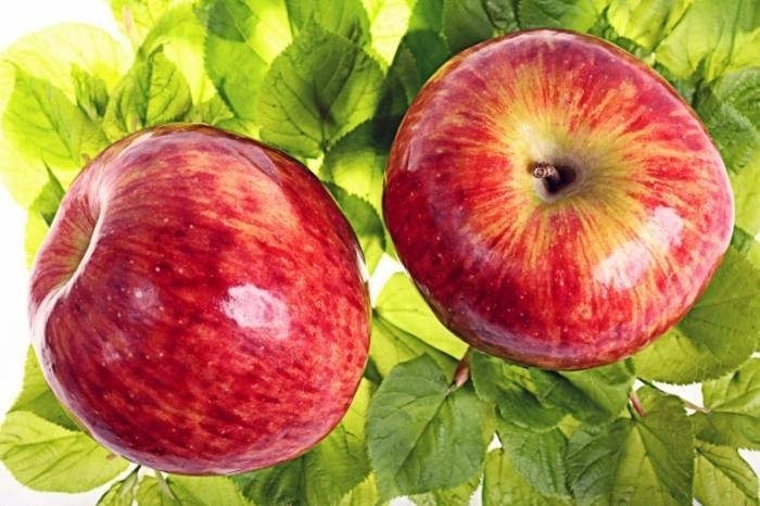 Dollarphotoclub 68990184 700x466 Красные яблоки   Red apples