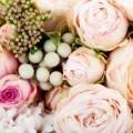 Розы - Roses