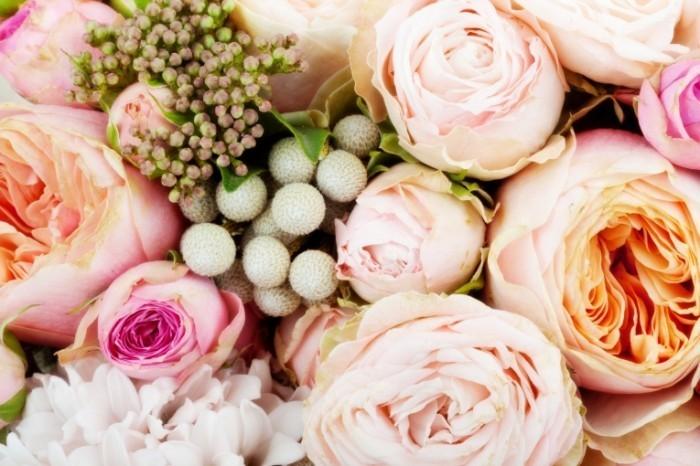 dollarphotoclub 62099212 700x466 Розы   Roses