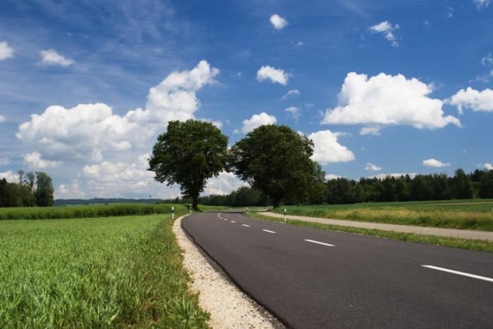 DSC02765 700x468 Дорога с деревьями   Road with trees