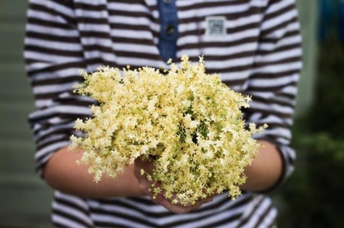 IMG 8076 edited 1 700x465 Цветы в руках   Flowers in hands