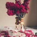 Цветы в вазе - Flowers in a Vase