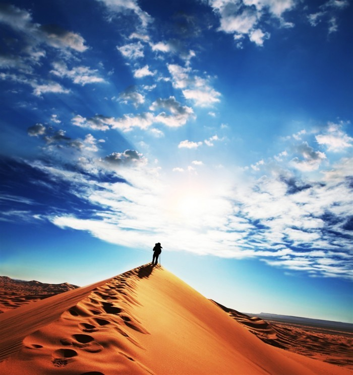 Fotolia 11940752 Subscription L 700x745 Силуэт в пустыне   Silhouette in the desert