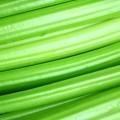 Зеленые стебли - Green stalks