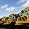 Школьные автобусы - School buses