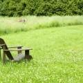 Стульчик на траве - Chair on the grass