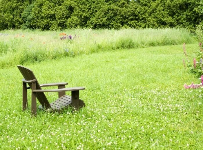 istock 000009750004large 700x520 Стульчик на траве   Chair on the grass