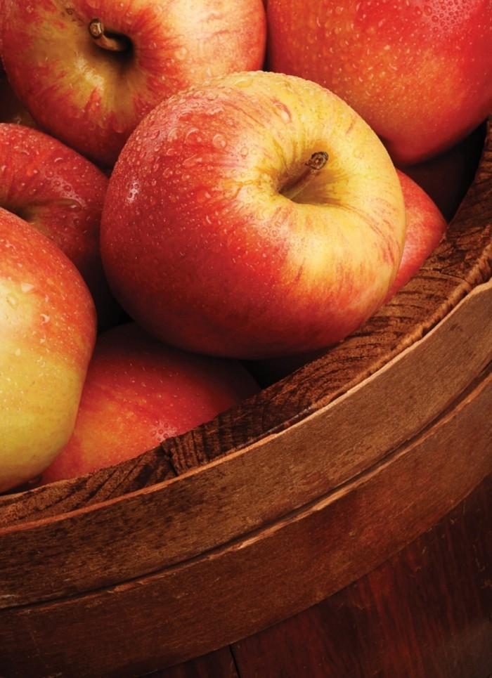 16 03 NUVO Magazine Autumn 2013 fyi page 2 image 00011 700x965 Яблоки   Apples