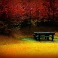 Лавочка осенью - Bench in autumn