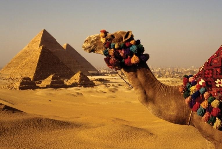 Картинки с пустыней и верблюдами и пирамидами